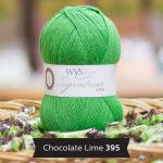 WYS - 4ply - Chocolate Lime