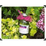 Grapeseed Bath Oil