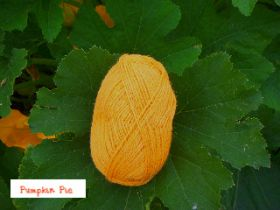 Pumpkin Pie Chilla Valley Alpaca Colours