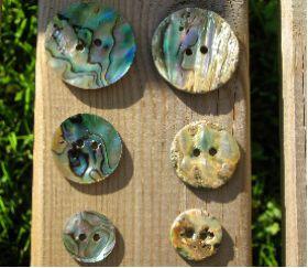 Handmade Pava Shell Buttons